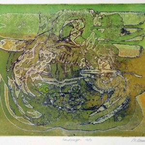 Roger Dewint - Landscape - Gravure
