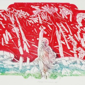 Roger Dewint - Paysage encombrant - Gravure
