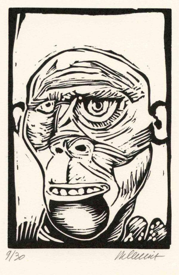 Roger Dewint - 4x624 (9) - Gravure