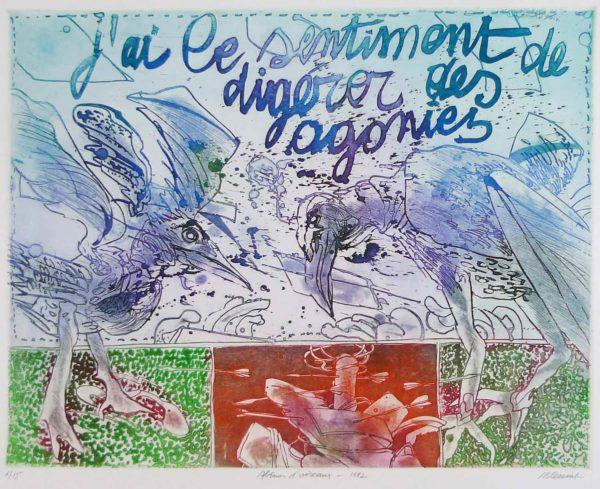 Roger Dewint - Abîme d'oiseaux - Gravure