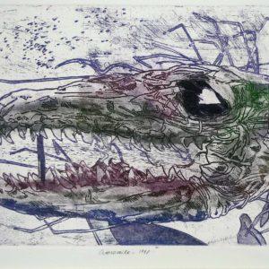 Roger Dewint - Crocodile - Gravure