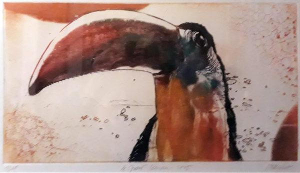 Roger Dewint - Grand toucan - Gravure